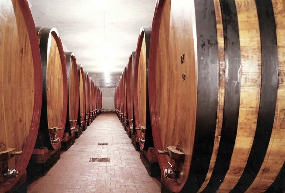 Storia casa vinicola Testa Zona Botti in rovere per invecchiamento